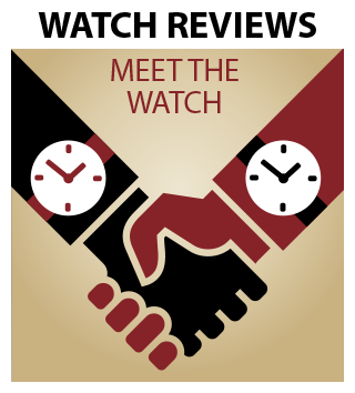 Meet the Watch Series icon